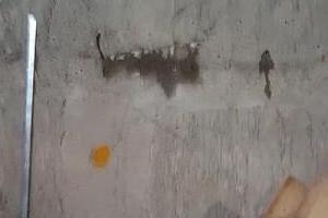 Zawilgocenie ścian budynku 24