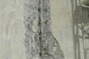Zawilgocenie ścian budynku 3
